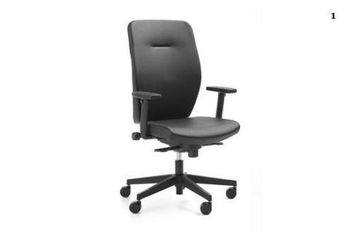 fotele pracownicze Dual 01