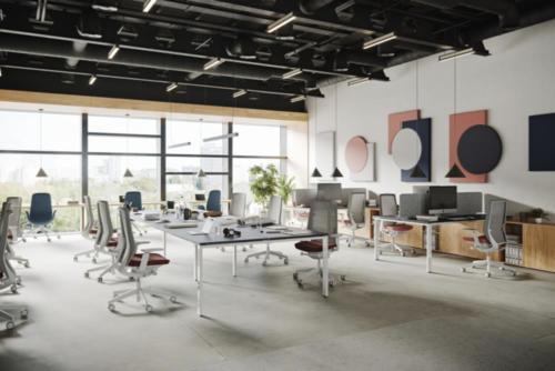 Fotele gabinetowe Accis Pro 01
