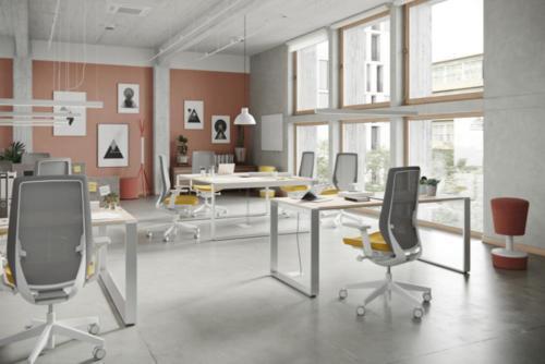 Fotele gabinetowe Accis Pro 02