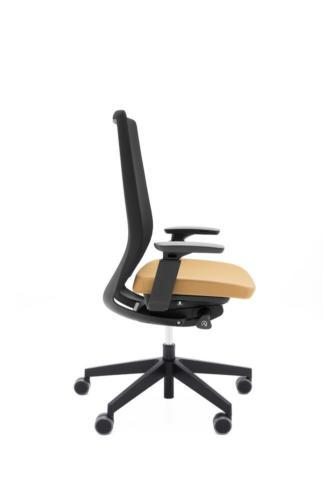 Fotele gabinetowe Accis Pro 09