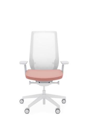 Fotele gabinetowe Accis Pro 12
