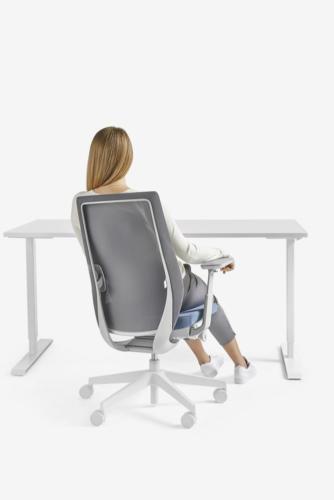Fotele gabinetowe Accis Pro 25